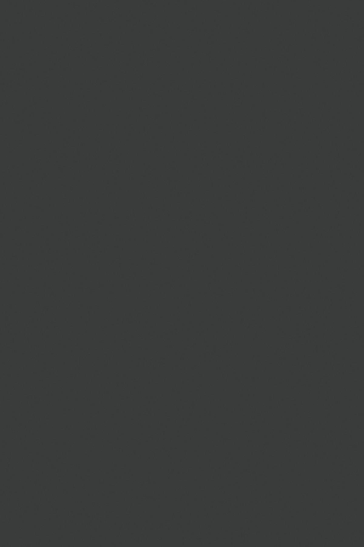 Антрацит 0164 PE