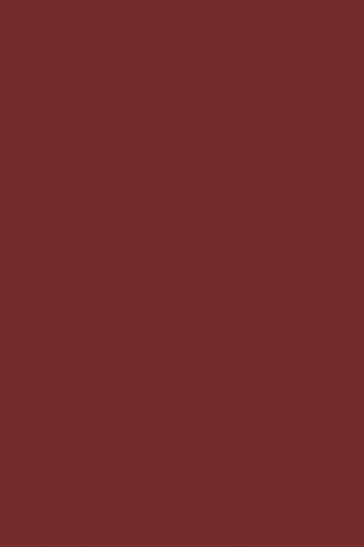 Червоний Оксид 9551 BS
