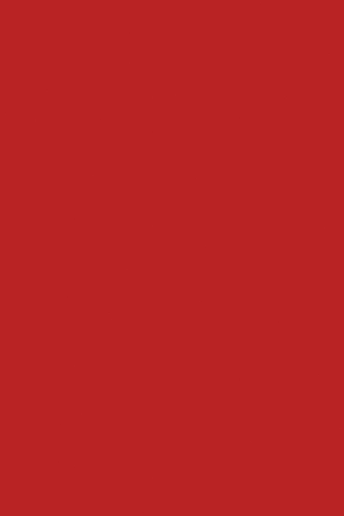 Червоний 0149 BS