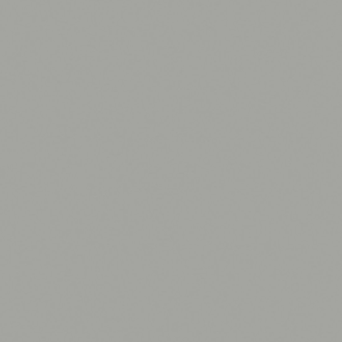 Шиншила Сіра 0197 SU