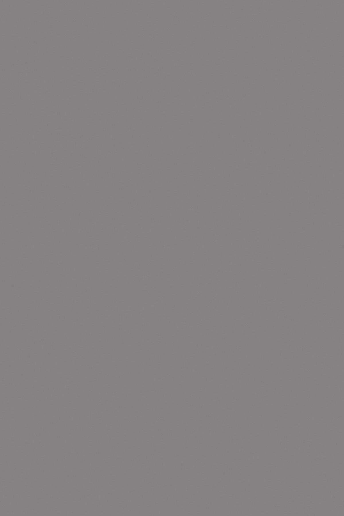 Сірий Шифер 0171 PE