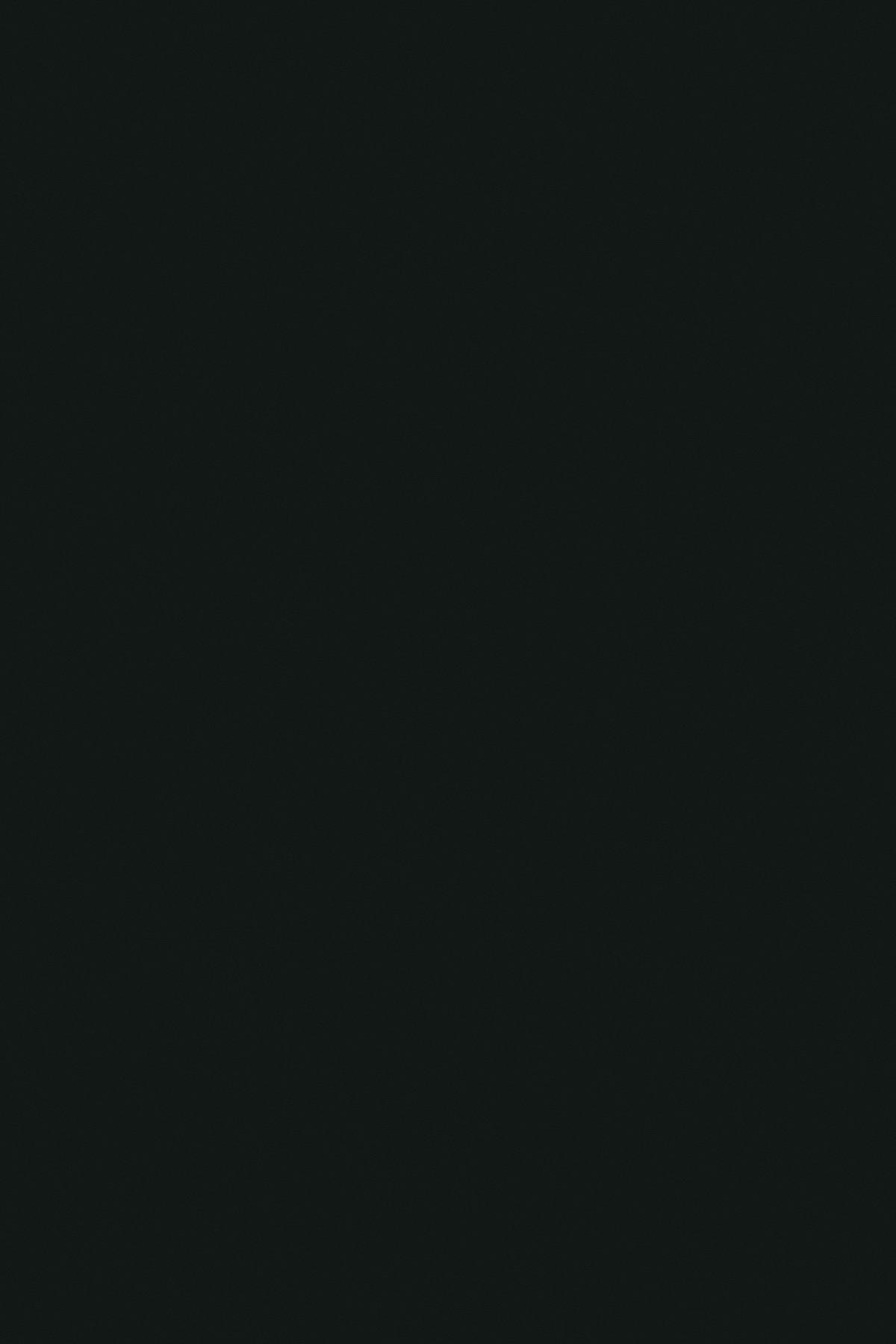 Чорний 0190 PE