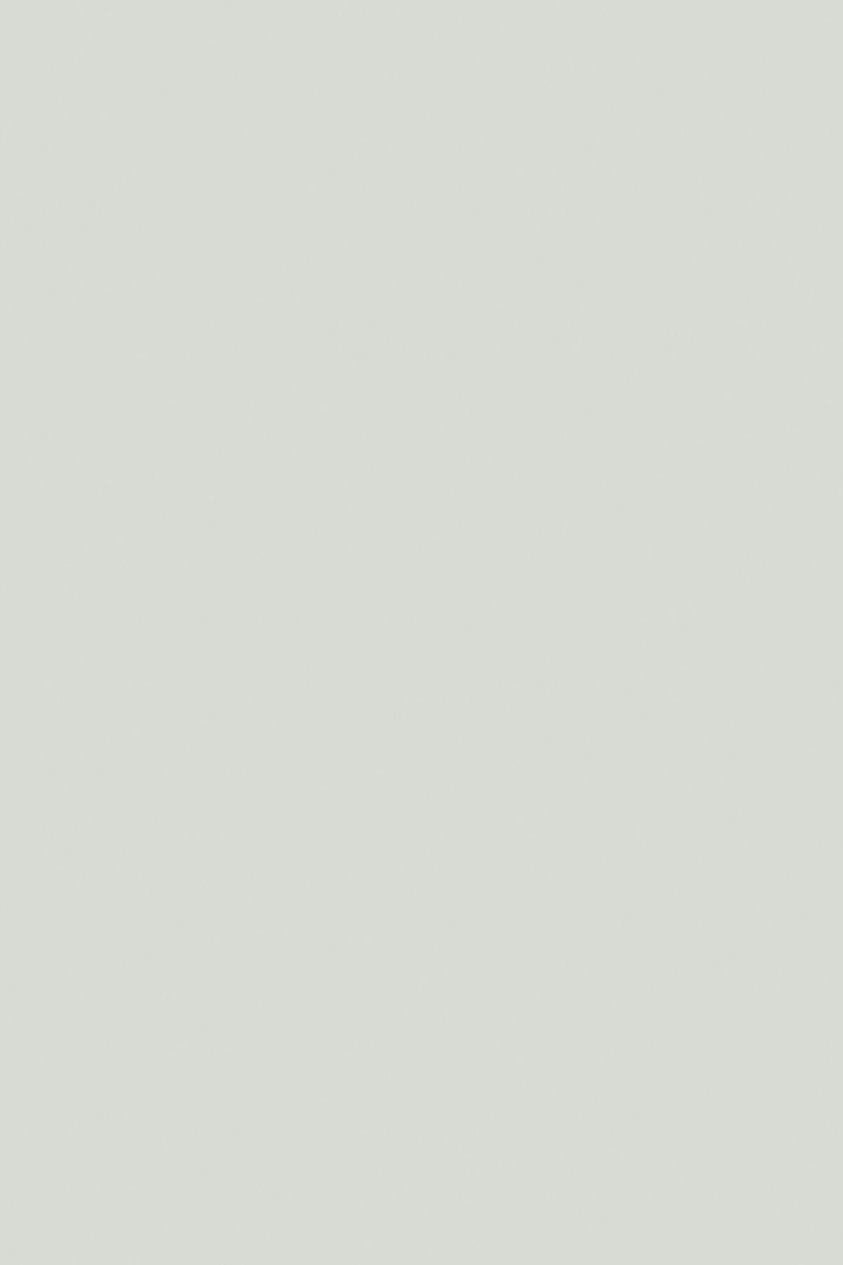 Холодний сірий 0191 SU
